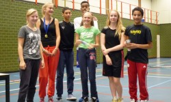 2013 volleybaltoernooi5a