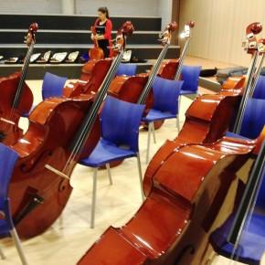 OSB super breed en symphonic