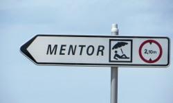 2015 mentoraat1a